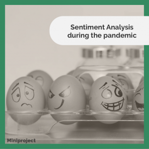 sentiment_analysis_during_the_pandemic