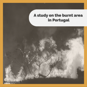 mini_project_a_study_on_the_burnt_area_in_portugal