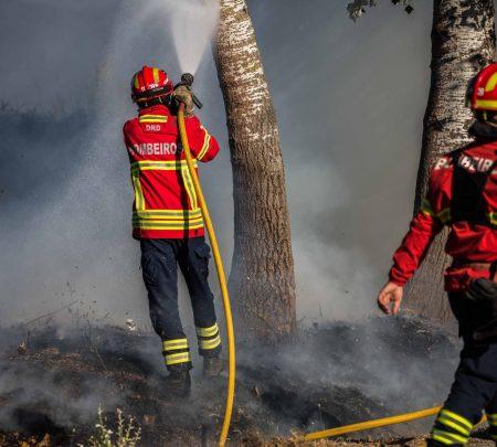 VOST: Voluntários Digitais em Situações de Emergência